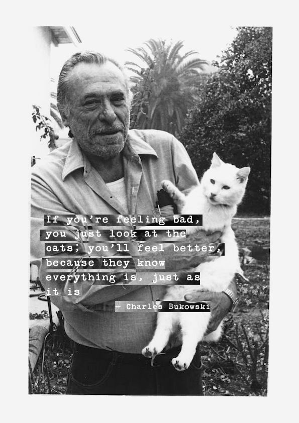 bukowski with his cat