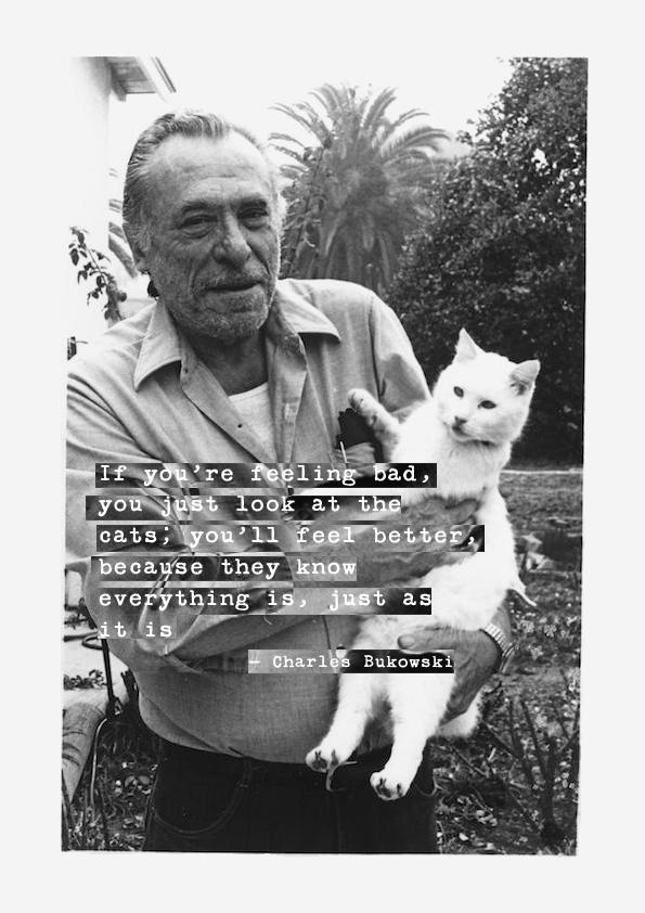bukowski with his cat